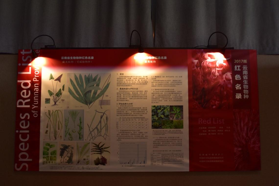 云南省生物物种红色名录