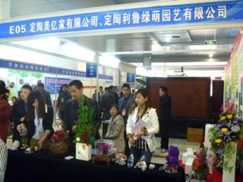 梦之草保鲜花在北京、菏泽花博会上大放异彩