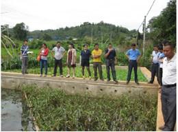 农村环境连片综合整治示范项目