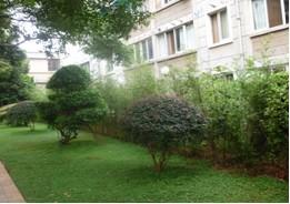 省政府办公大楼旁部分绿化景观改造