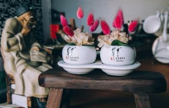 梦之草®保真卉作为唯一一个保鲜花品牌脱颖而出